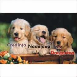 Stickere crestine Credinta, Nadejdea, Dragostea