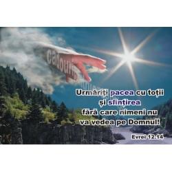 Stickere crestine Urmariti pacea cu toti si sfintirea...