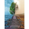 Stickere crestine Psalmi 1.3 - Este ca un pom sădit lângă un izvor de apă...